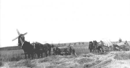 Bauernwirtschaft früher