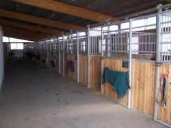 Neuer Stall 1