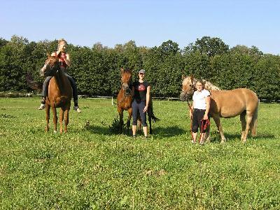 Unsere Pferdeweiden