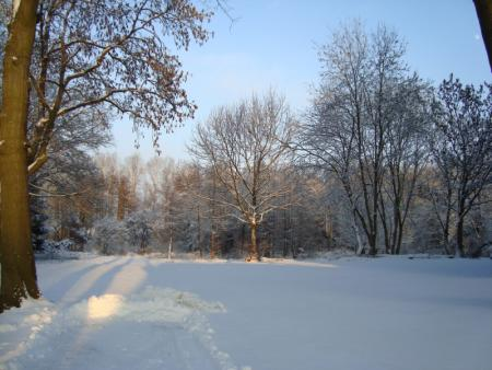 (47) Winterlandschaft