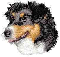 Australischerhund