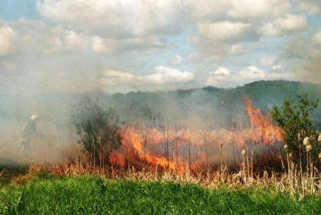 Flächenbrand 12.05.2009
