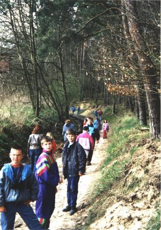 Auf Schusters Rappen durch den Wald