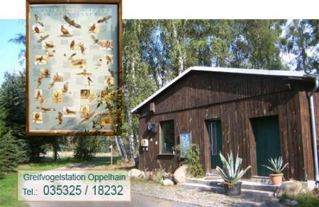 Greifvogelstation Oppelhain