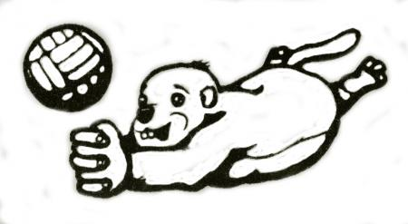 Murmeltier Logo.jpg