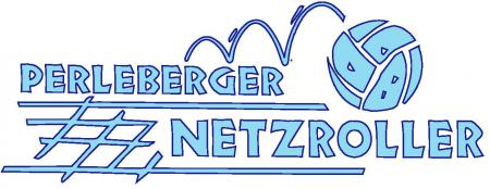 Netzroller blau.jpg