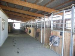 Neuer Stall 2