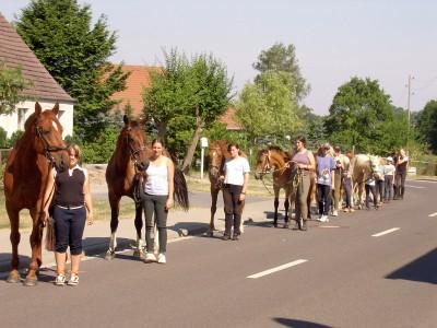 Pferde und Menschen 3