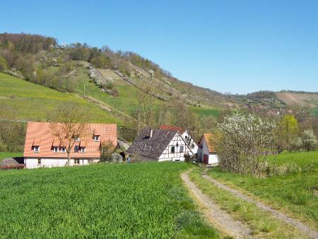 Steinriegel im Tal