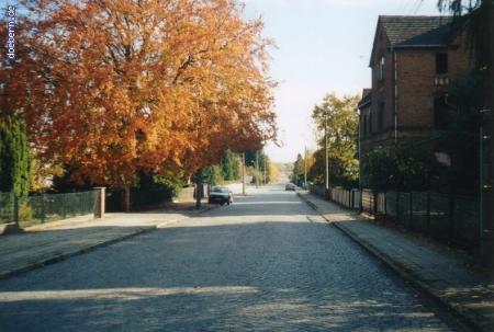 vs_Herbst_Herbst11.jpg