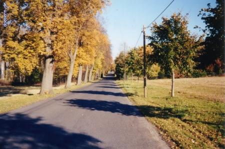 vs_Herbst_Herbst7.jpg