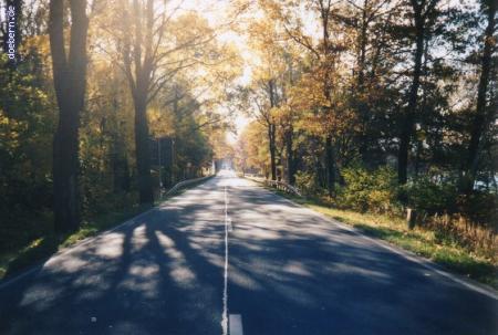 vs_Herbst_Herbst9.jpg