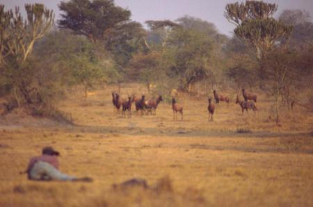 Filmproduktion in Afrika