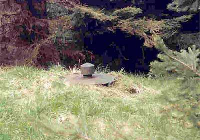 Brunnen im Oberwald