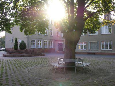 Schule im grünen