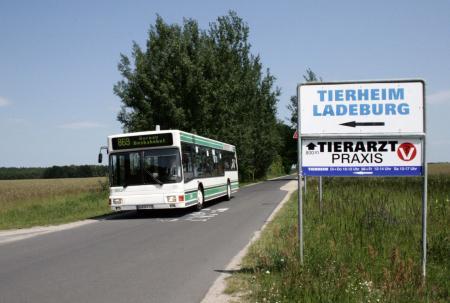 Haltestelle Ladeburg, Tierheim