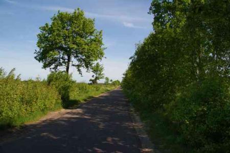 Radweg_1-1