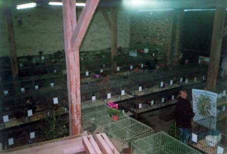 Im  Austellungsraum des Bauernmuseum Zahna