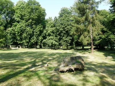 Schlosspark Dahme/Mark