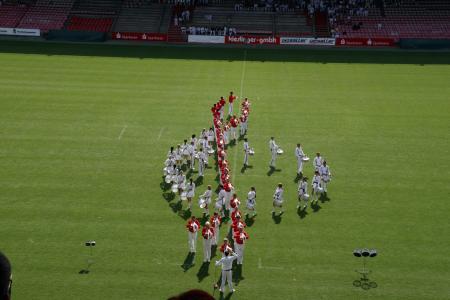 Schnapp_2008_9